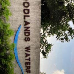 Woodlands User Photo