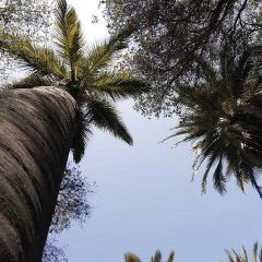 Parque Nacional La Campana User Photo