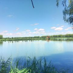 Xihai Wetland Park (South Gate) User Photo