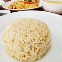 福明海南雞飯用戶圖片