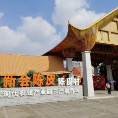 Chenpi Village User Photo