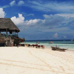 Nungwi Beach User Photo