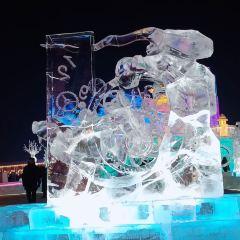 哈爾濱冰雪大世界張用戶圖片
