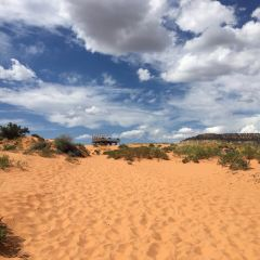 Coral Pink Sand Dunes State Park User Photo