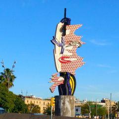 巴塞羅那塔海灘用戶圖片