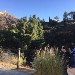 Lake Hollywood Park User Photo
