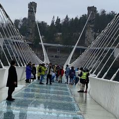 Zhangjiajie Grand Canyon Glass Bridge User Photo