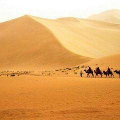 Wahiba Sands User Photo