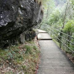 Micang Mountain Ancient Plank Road User Photo