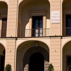 科雷亞萊博物館用戶圖片