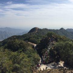 八仙山自然保護區用戶圖片