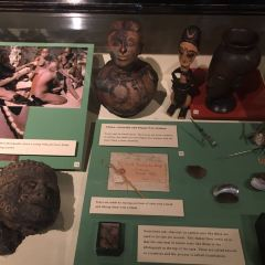 Pitt Rivers Museum User Photo
