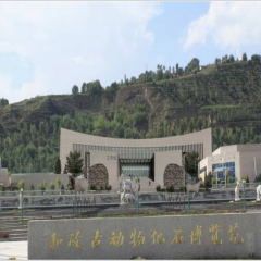 Hezheng Gudongwu Huashi Museum User Photo