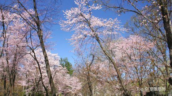 Kaguraoka Park