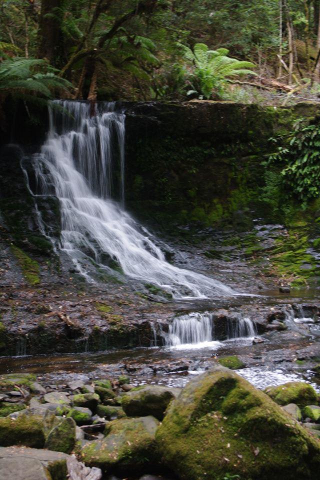 마운트 필드 국립공원