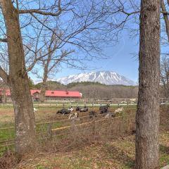 Koiwai Farm Makibaen User Photo