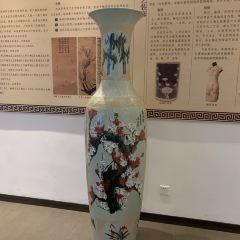 中國梅花藝術館用戶圖片