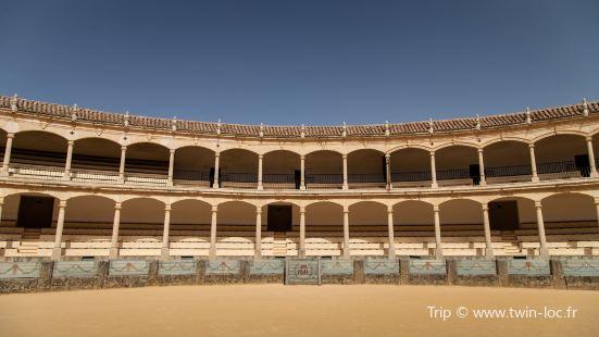 Carriage Museum (Museo de Carruajes)