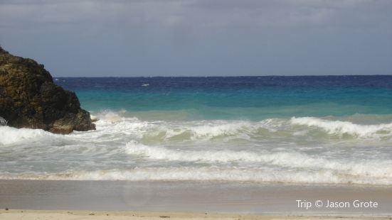 Shoys Beach