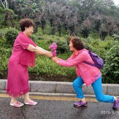Shaoyang Nanshan Mountain User Photo