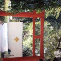 Japanese Garden User Photo