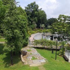 Botanical Garden用戶圖片