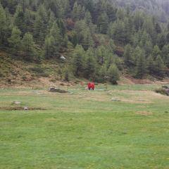 Albula-Bernina express, RhB User Photo