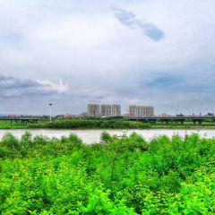 穆棱河公園用戶圖片