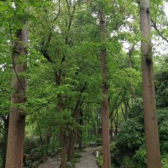 Song Taishan Scenic Area User Photo