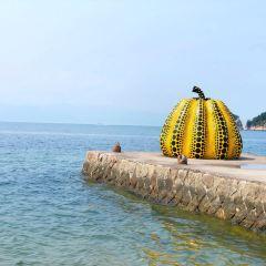 直島のユーザー投稿写真