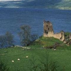 Nessieland Castle Monster Centre User Photo