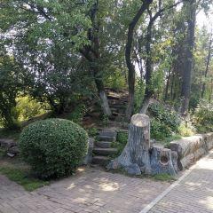 고구려유적공원 여행 사진
