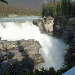 阿薩巴斯卡瀑布用戶圖片