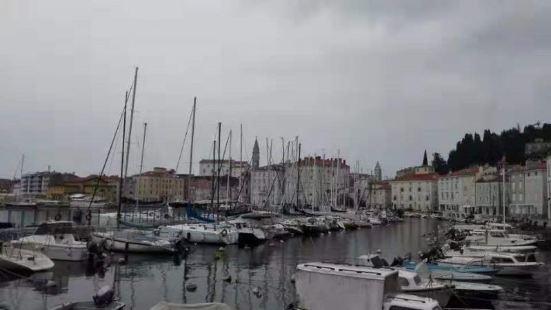 皮兰是斯洛文尼亚最西边的城市,海对面就是意大利威尼斯,整个小