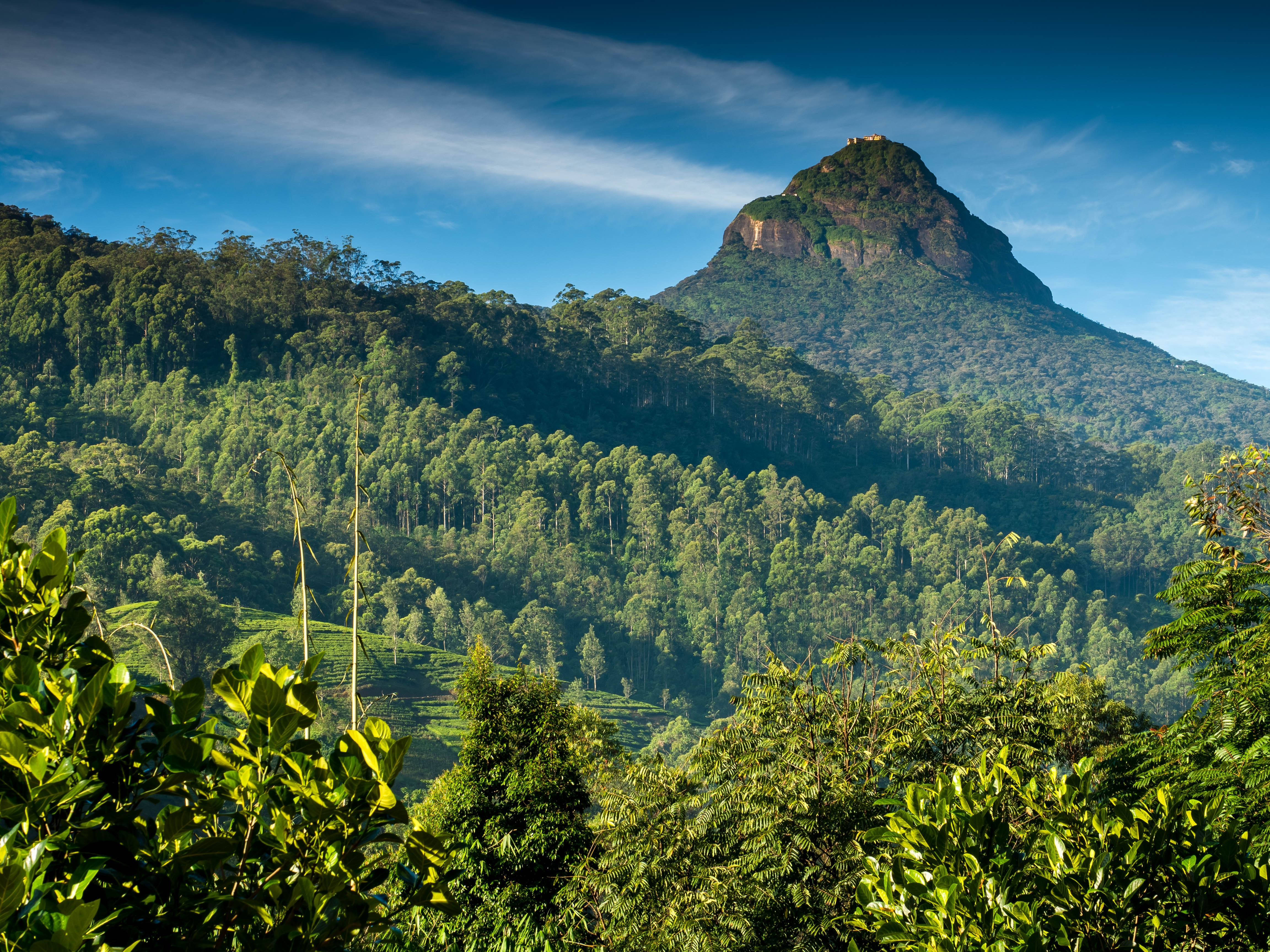 Some Things You Must Do in When Sri Lanka