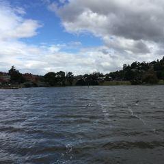 朗斯頓河用戶圖片
