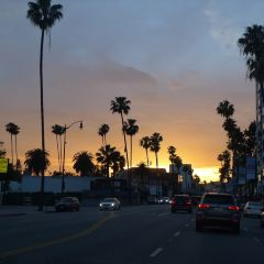 Sunset Boulevard User Photo