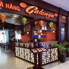 Galangal User Photo