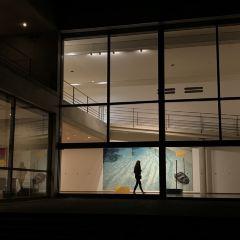 直島當代美術館用戶圖片