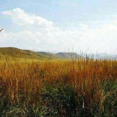 Ganjia Grassland User Photo