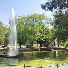 卡斯爾達公園用戶圖片