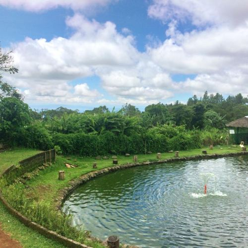 Eden Nature Park