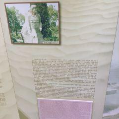 刀郎畫鄉用戶圖片