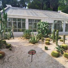 Yinsheng Botanical Garden User Photo