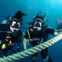 探索潛水中心張用戶圖片
