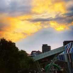 花博公園用戶圖片