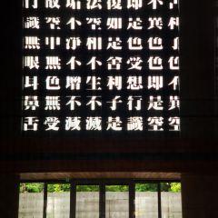 法鼓山農禪寺用戶圖片