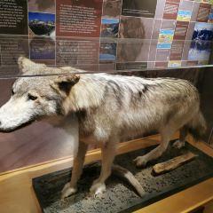 惠斯勒博物館用戶圖片