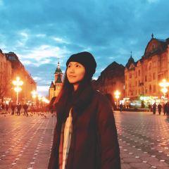 蒂米什瓦拉勝利廣場用戶圖片