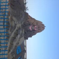 六鰲翡翠灣用戶圖片